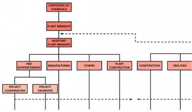 Engineering Organization Structure