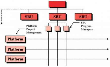 Strategic Business Unit Structure
